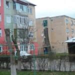 Consilierul Vasile Sorin (PP-DD), critică modul în care primăria Cugir face toaletarea arborilor ornamentali