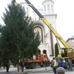 """A fost ridicat Bradul de Crăciun în faţa Bisericii """"Adormirea Maicii Domnului"""" din Cugir"""