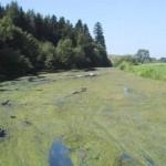 Apele din Cugir vor fi protejate împotriva poluării cu nitraţi proveniți din sursele agicole din zonă