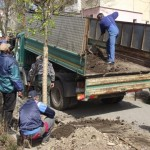 """Consiliul Local al orașului Cugir a a aprobat Campania """"Curațenia de primăvară 2017"""". Acțiunea se va desfășura între 6 martie și 7 aprilie"""