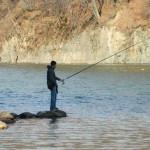 Doi bărbați din Șibot surprinși în flagrant în timp ce pescuiau folosind plase monofilament