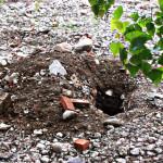 Administraţia din Cugir va sancţiona colectarea materialelor reciclabile de pe domeniul public sau privat al oraşului