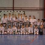 Karatiștii de la CSO Cugir s-au calificat la Campionatul Mondial