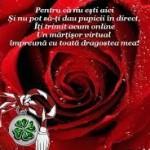 Mesaje de 1 martie 2015. Ce sms-uri, felicitări şi mesaje puteţi trimite cu ocazia venirii primăverii | cugirinfo.ro