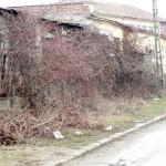 Strada Serelor din Cugir, transformată în strada nepăsării?