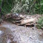 """Râul Cugir """"inundat"""" de gunoaiele lăsate de turiștii ajunși în zonă"""