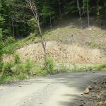 Investiţie costisitoare, lucru prost făcut pe drumul forestier Râul Mic – Bucuru