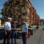 Peste 35 de metri cubi de material lemnos confiscați în urma unui control în trafic, la Cugir
