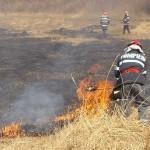 """Incendiu de vegetație uscată în zona """"Pârâul Gugului"""" din Cugir"""