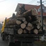 Peste 20 de metri cubi de material lemnos transportați fără forme legale, confiscaţi de poliţiştii din Cugir