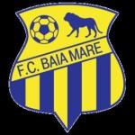 Autocarul care transporta echipa de juniori B a clubului FCM Baia Mare s-a răsturnat lângă Cugir