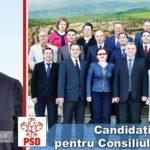 (P) Alegeri Locale 2016 – Prezentarea echipei de consilieri locali propusă de PSD Cugir – Mihaela BOTA – 38 de ani, asistent social