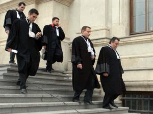 avocati-barou