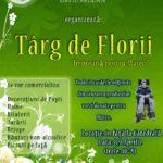 Mobilizarea locuitorilor de la poalele Drăganei, continuă: Târg de Florii la Cugir pentru Mateo, băieţelul grav bolnav!
