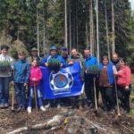 Jandarmii din Cugir au plantat, voluntar, circa 300 de puieți în zona Munților Șureanu