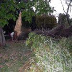 """Furtuna violentă, din această după-amiază, s-a soldat și la Cugir cu pagube majore. Festivalul """"Toamna Cugireană"""" a fost întrerupt pentru circa două ore"""