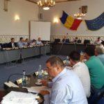 """Dana Găiseanu desemnată reprezentantă a Consiliului Județean Alba în Adunarea Generală a Acționarilor la """"Parcul Industrial Cugir"""""""