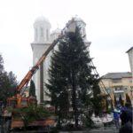 """În fața Bisericii """"Adormirea Maicii Domnului"""" din CUGIR a fost montat tradiționalul BRAD de CRĂCIUN"""