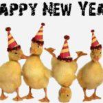MESAJE SMS de Anul Nou 2018 haioase. Urări și Felicitări amuzante pe care le puteți transmite celor dragi | cugirinfo.ro