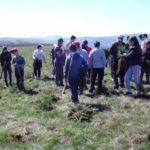 """Elevii Școlii """"Ioan Mihu"""" din Vinerea au plantat peste 200 de puieți de molid în zona Recea"""
